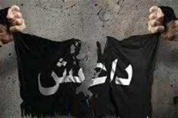 بازداشت 6 داعشی از جمله تک تیرانداز معروف تکفیری در موصل
