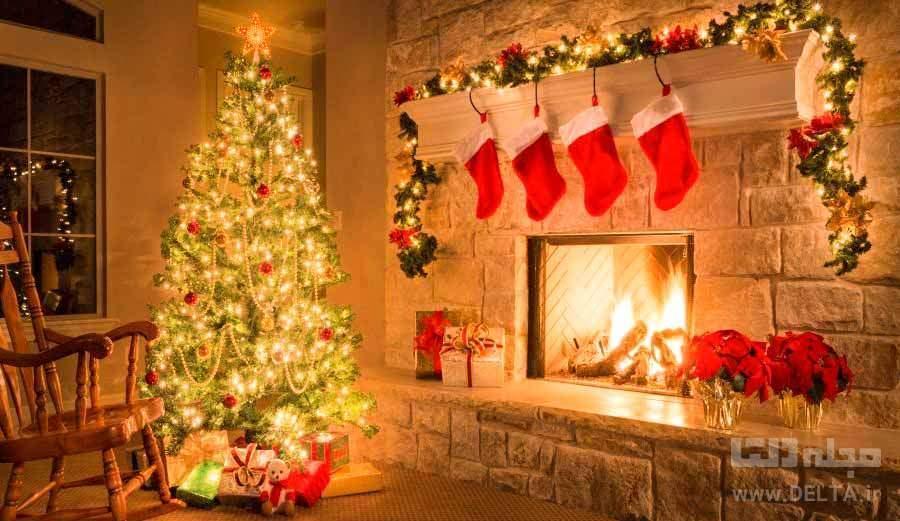 درخت کریسمس و آنچه راجع به آن نمی دانید